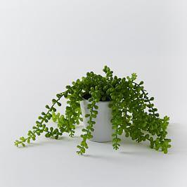 Faux Potted Trailing Succulent