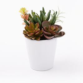 Faux Plant - Multi