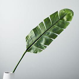 Faux Botanicals - Banana Leaf