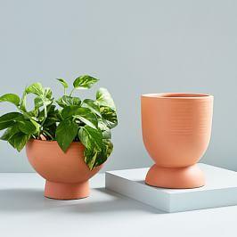 Pure Terracotta Planters