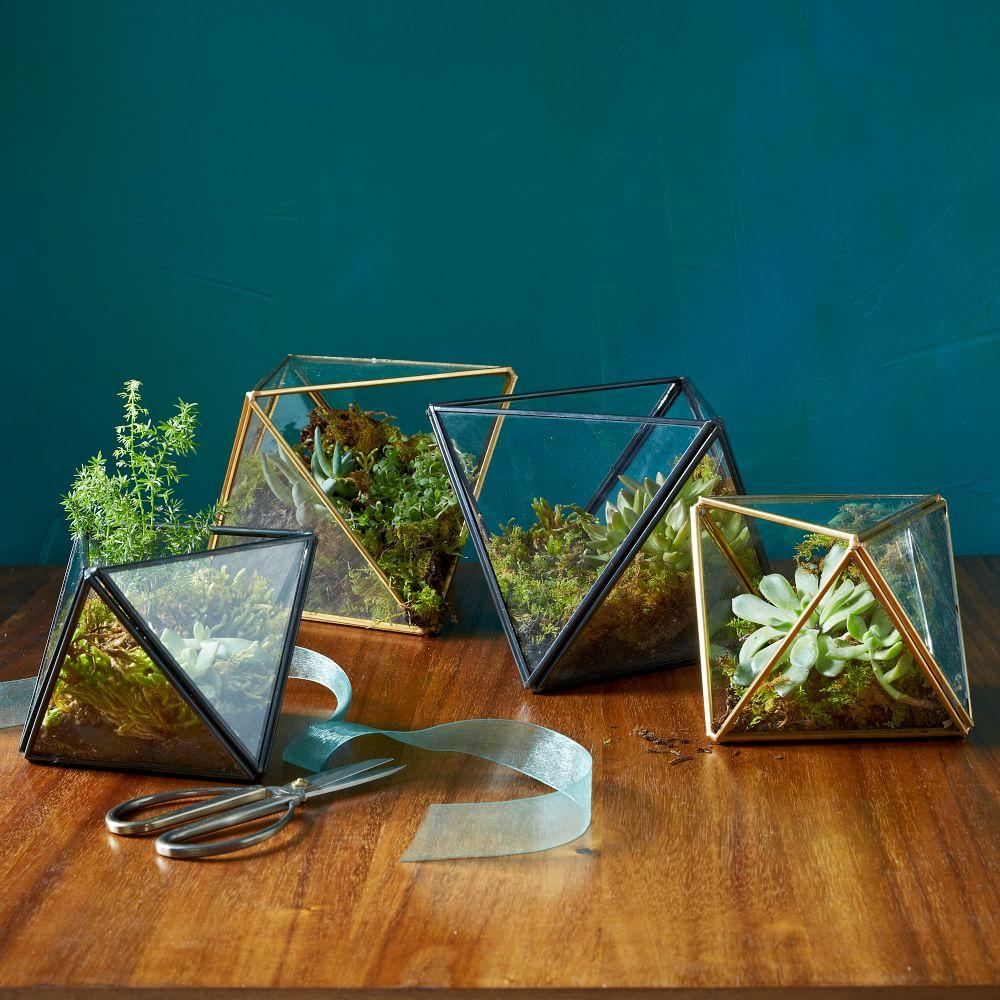faceted terrariums west elm uk. Black Bedroom Furniture Sets. Home Design Ideas