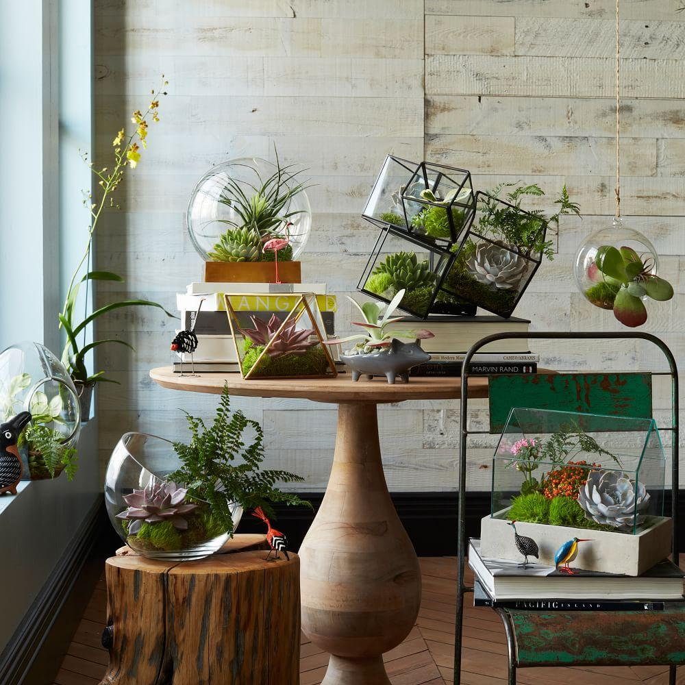 Faceted terrariums west elm uk for Jardin interieur appartement