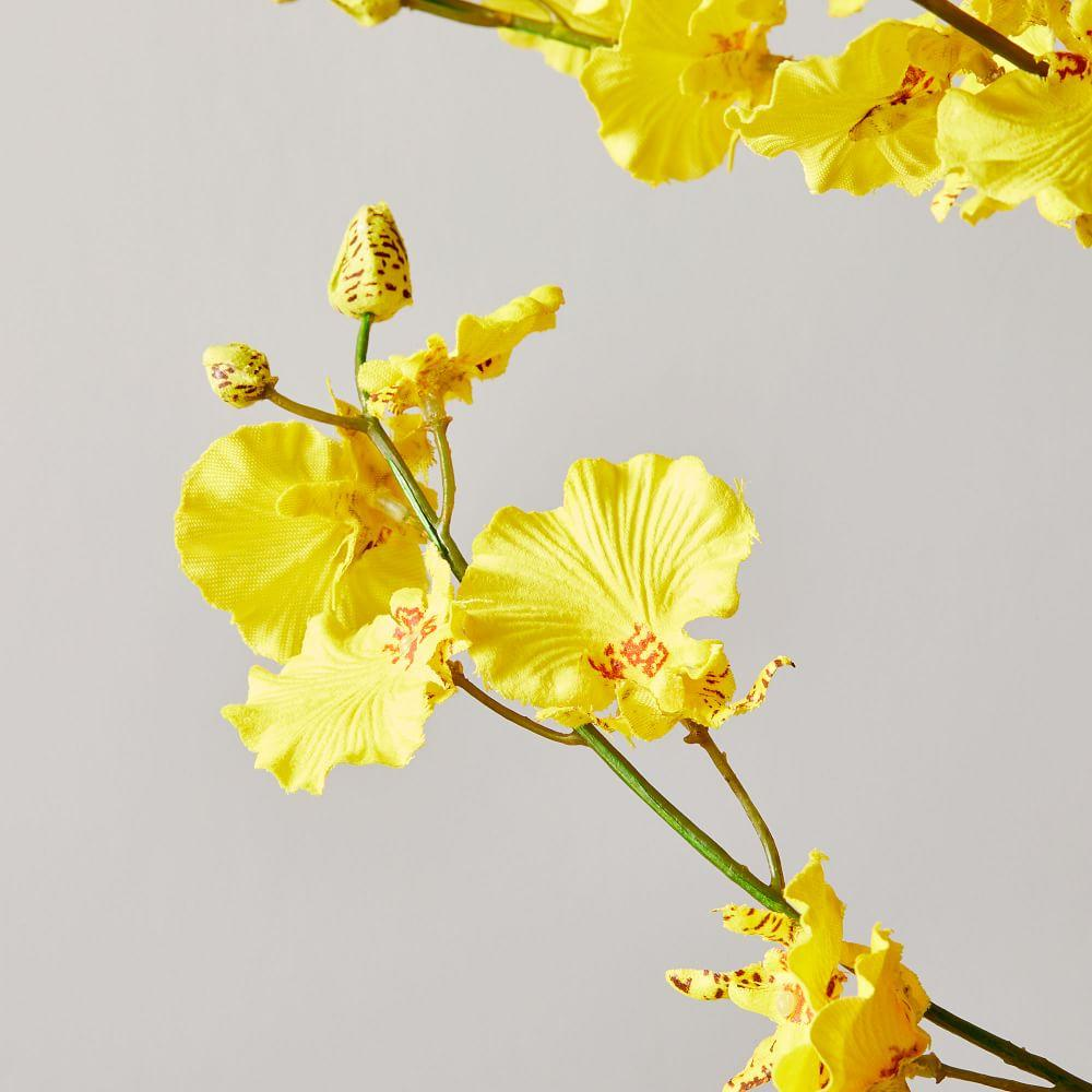 Faux Botanicals - Dancing-Lady Orchid