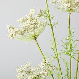 Faux Botanicals - Queen Anne's Lace