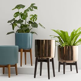 25% Off All Planters + Faux Botanicals