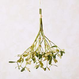 Hanging Mistletoe Bundle