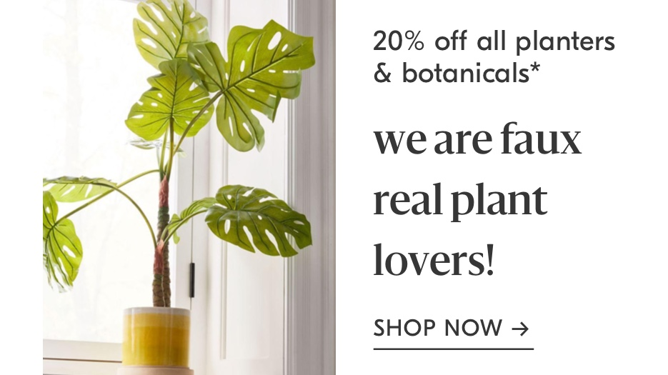 20% Off All Planters + Botanicals